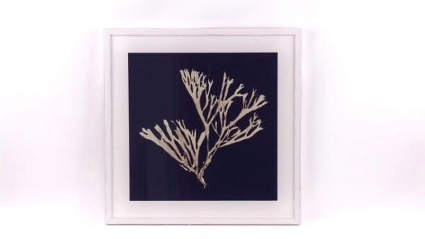 Rahmen Seaweed On Navy 2